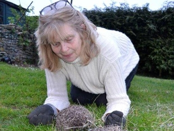 Jane and her hedgehogs