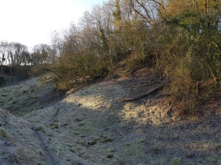 Stenders Quarry Nature Reserve before the project