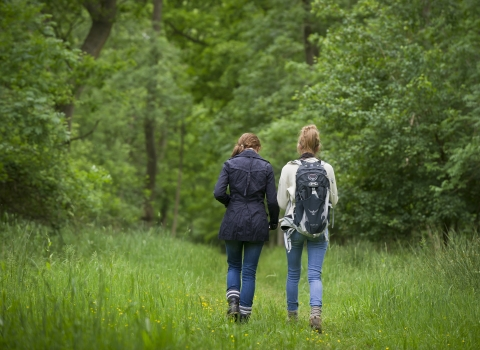 Two people walking in the countryside away from the camera